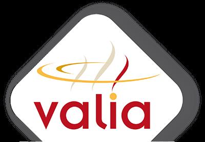 LOGO-VALIA-2020-400w